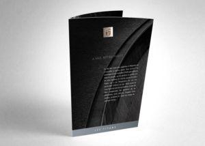Provins_titans_brochure_1_sion_sierre_martigny_Monthey_Valais_eddy_pelfini_graphic_design_graphisme_graphiste_agence_de_publicite_communication_visuelle