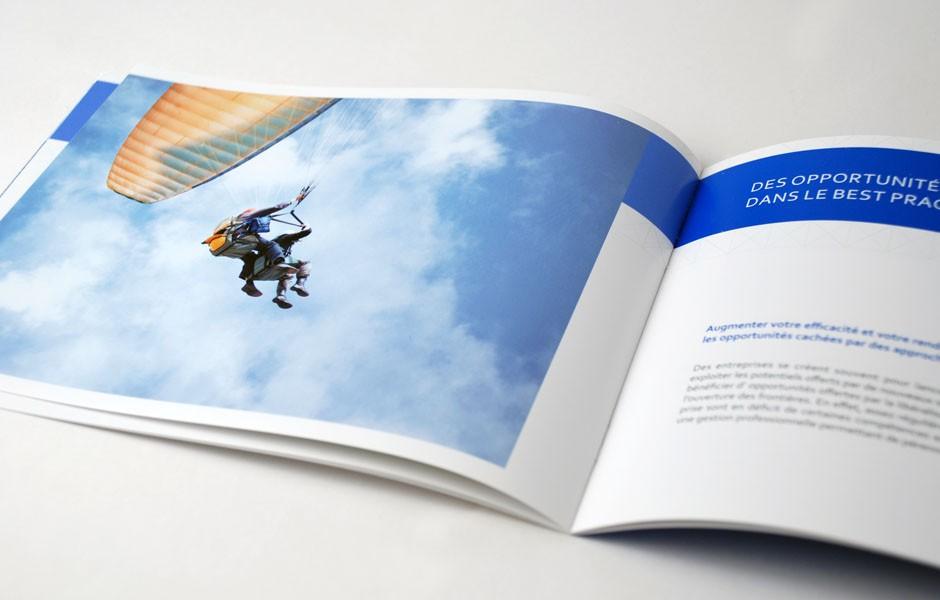 devas_consulting_brochure_3_sion_sierre_martigny_Monthey_Valais_eddy_pelfini_graphic_design_graphisme_graphiste_agence_de_publicite_communication_visuelle